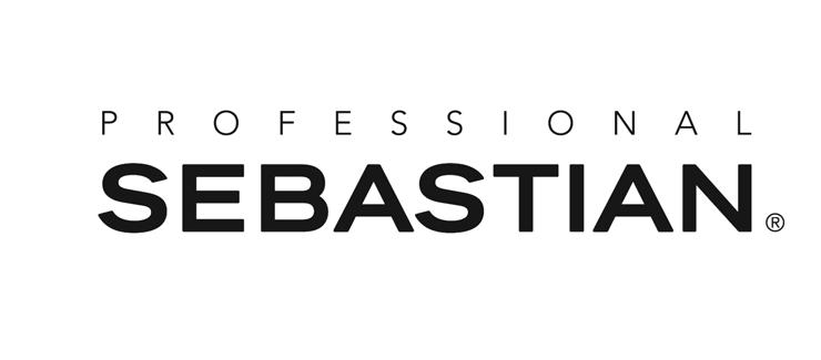 Logo Professional Sebastian